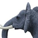 Słoń reklamowy - trąba opuszczona