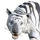 Tygrys - figura reklamowa