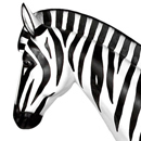 Zebra - figura reklamowa
